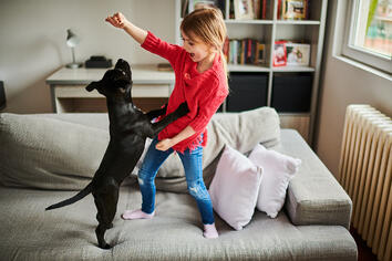 Pets and Financial Planning