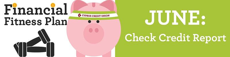 Check Your Credit Report - Financial Fitness Plan